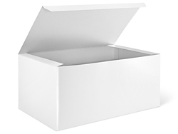 "14 x 8 x 6"" White Gloss Gift Boxes"