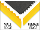 Male and Female Edges